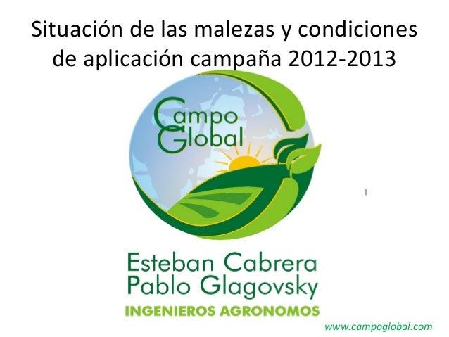 Situación de las malezas y condicionesde aplicación campaña 2012-2013www.campoglobal.com
