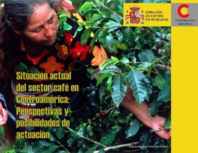 EMBAJADA DE ESPAÑA EN HONDURAS  Situación actual del sector café en Centroamérica: Perspectivas y posibilidades de actuaci...