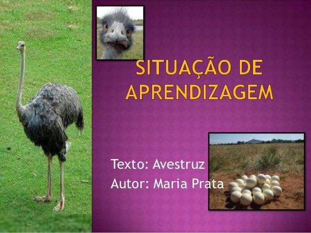 Texto: AvestruzAutor: Maria Prata