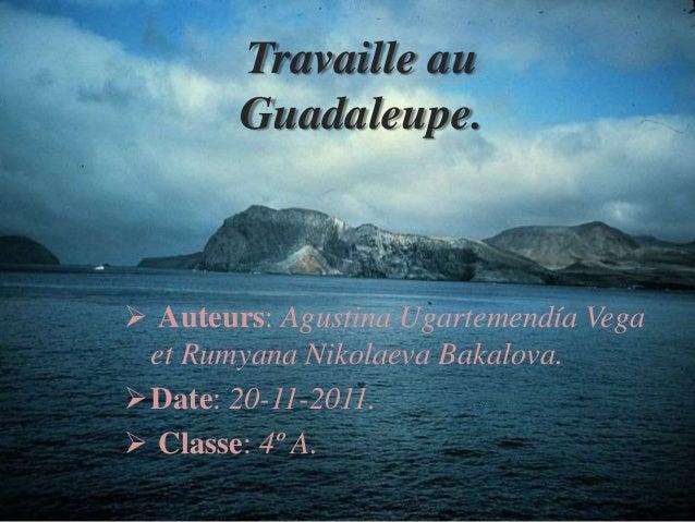 Travaille au Guadaleupe.  Auteurs: Agustina Ugartemendía Vega et Rumyana Nikolaeva Bakalova. Date: 20-11-2011.  Classe:...