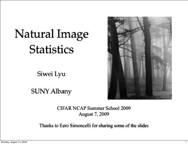Natural Image              Statistics                           Siwei Lyu                          SUNY Albany            ...