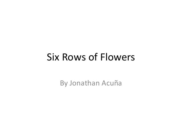 Six rows of flowers