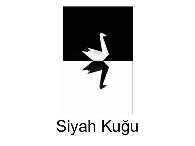 Siyah Kuğu/Black Swan