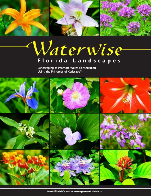 Waterwise Florida Landscapes: Landscaping to Promote Water Conservation Using the Principles of Xeriscape