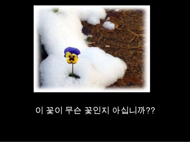 이 꽃이 무슨 꽃인지 아십니까??