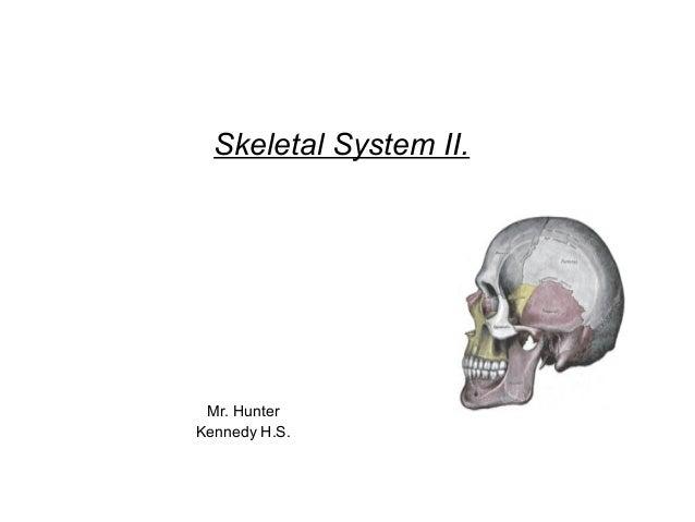 Skeletal System II. Mr. HunterKennedy H.S.