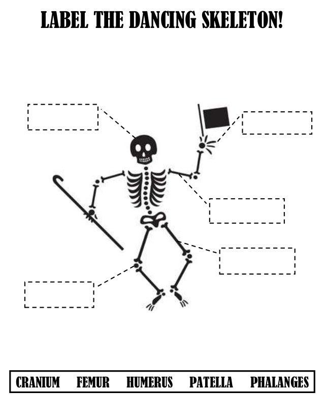 label the skeleton. Black Bedroom Furniture Sets. Home Design Ideas