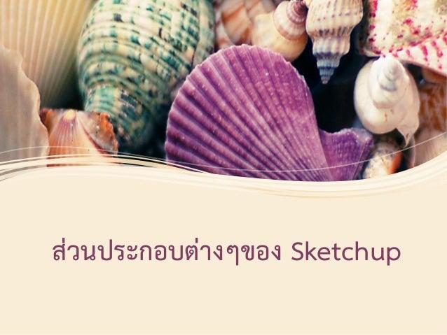 ส่วนประกอบต่างๆของ Sketchup