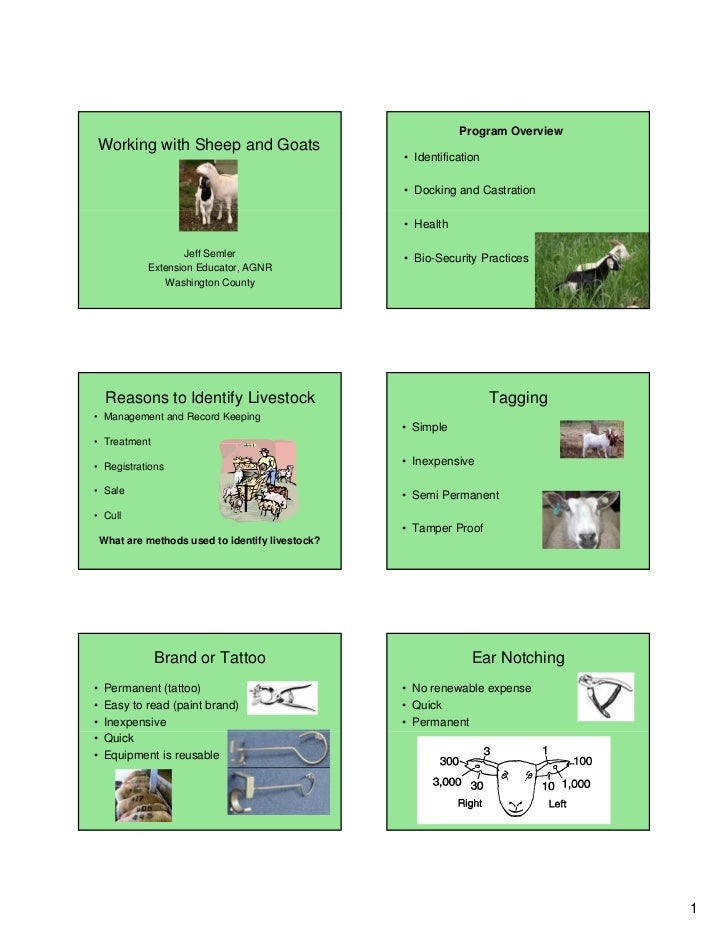Program OverviewWorking with Sheep and Goats                                                   • Identification           ...