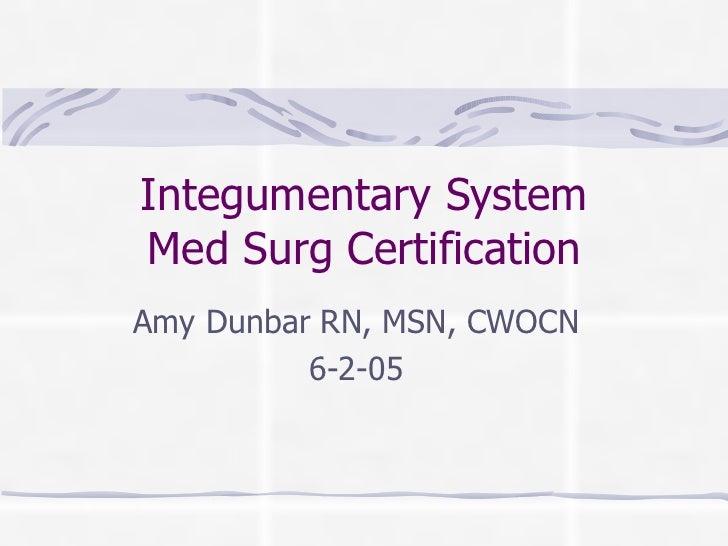 Integumentary SystemMed Surg CertificationAmy Dunbar RN, MSN, CWOCN          6-2-05