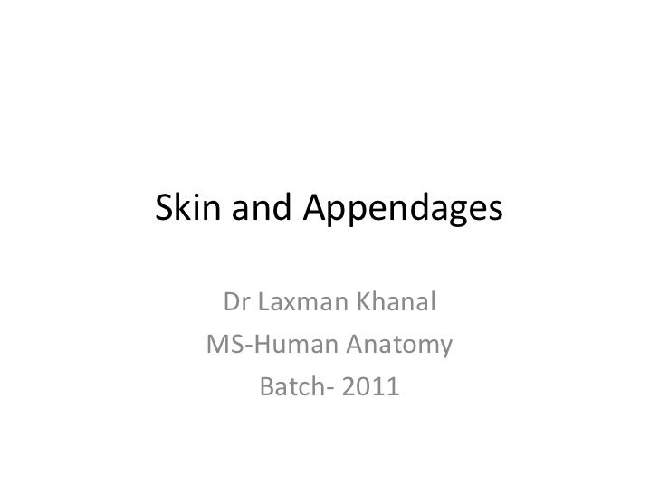 Skin and Appendages   Dr Laxman Khanal  MS-Human Anatomy      Batch- 2011