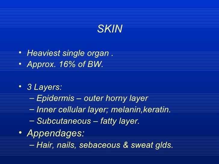 SKIN <ul><li>Heaviest single organ . </li></ul><ul><li>Approx. 16% of BW. </li></ul><ul><li>3 Layers: </li></ul><ul><ul><l...