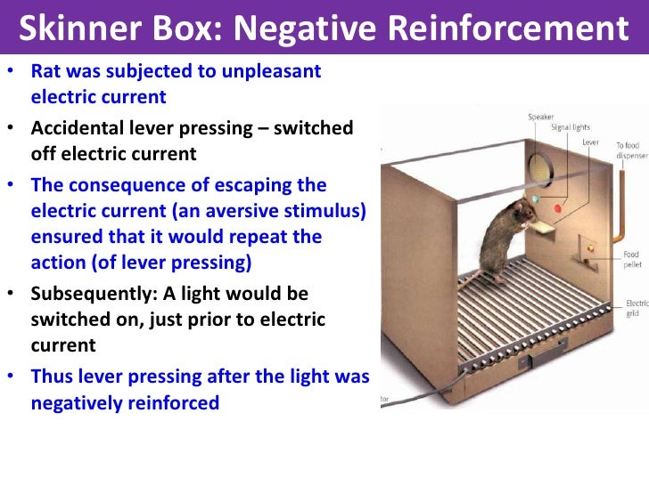 Operant conditioning  YouTube