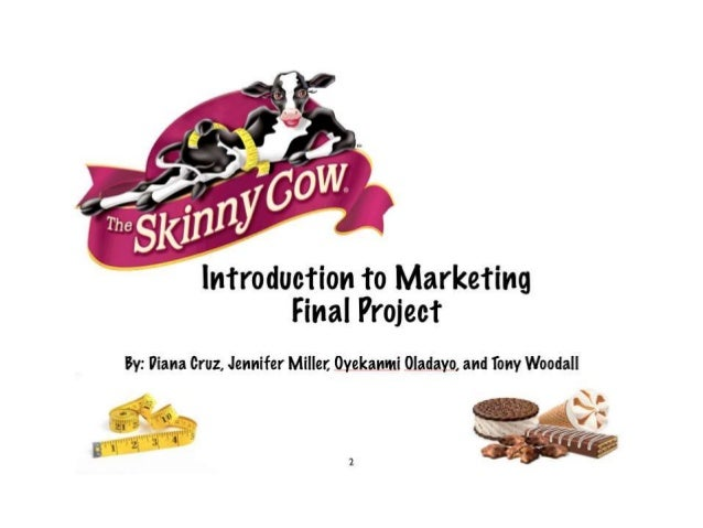 Get The Skinny on Skinny Cow Marketing Plan - Intro to Marketing Course