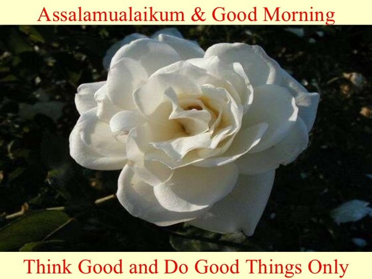 Assalamualaikum & Good Morning Think Good and Do Good Things Only