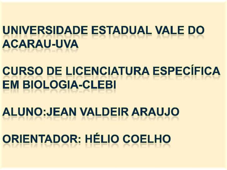 TEMA:     LIXO:          UM TRABALHO     INTERDISCIPLINAR NA      EDUCAÇÃO DE SÍTIO    ALEGRE-MORRINHOS-CE