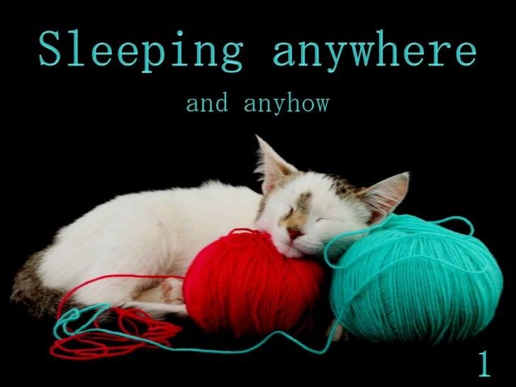 SLEEPING  ANYWHERE 1