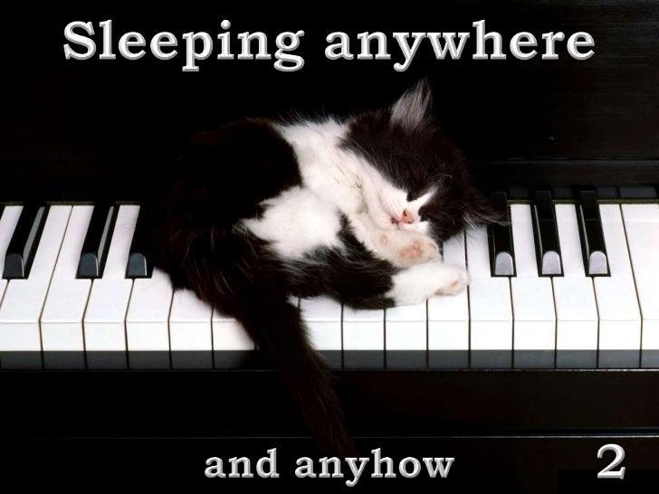 SLEEPING  ANYWHERE 2