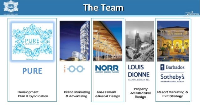 The Team  PURE                                                          PropertyDevelopment          Brand Marketing    As...