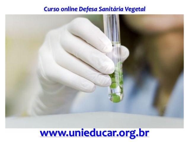 Slide curso defesa sanitaria vegetal