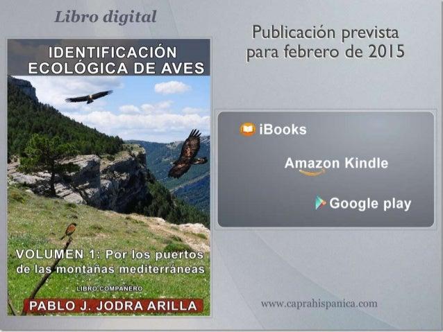 El libro en su conjunto (seis volúmenes), no es una Guía de aves al uso. Es un manual de comprensión y entrenamiento de la...