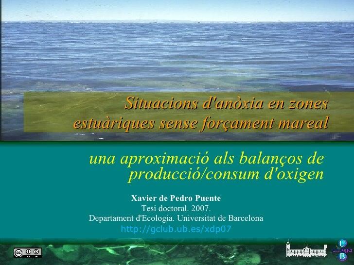 Slides Ph D Xavier De Pedro 2007