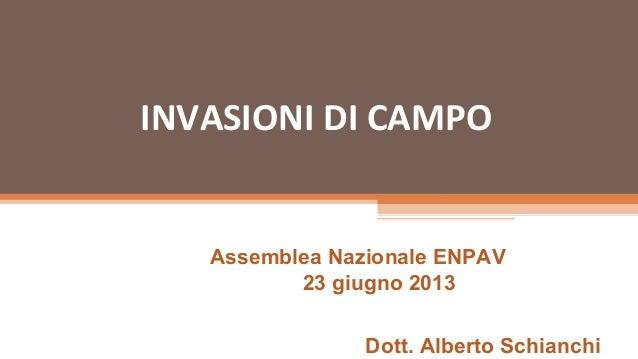 INVASIONI DI CAMPOAssemblea Nazionale ENPAV23 giugno 2013Dott. Alberto Schianchi