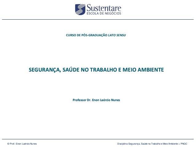 CURSO DE PÓS-GRADUAÇÃO LATO SENSU  SEGURANÇA, SAÚDE NO TRABALHO E MEIO AMBIENTE  Professor Dr. Enon Laércio Nunes  3026 49...