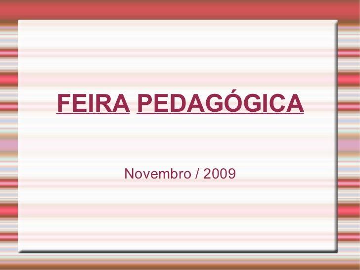 FEIRA   PEDAGÓGICA Novembro / 2009