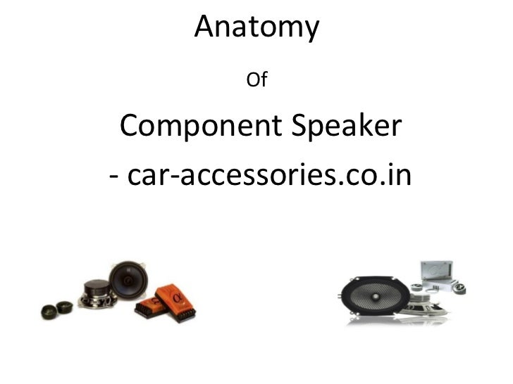 Anatomy          Of Component Speaker- car-accessories.co.in