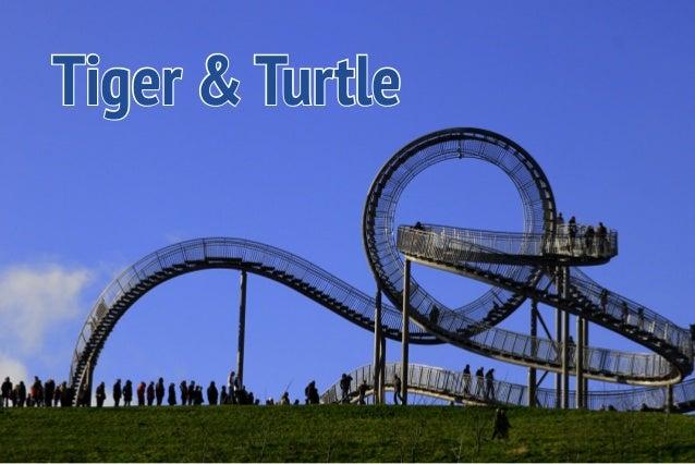 Tiger & Turtle