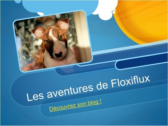 Découvrez son blog ! Floxiflux