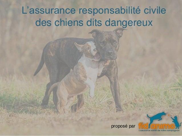 L'assurance responsabilité civile des chiens dits dangereux proposé par