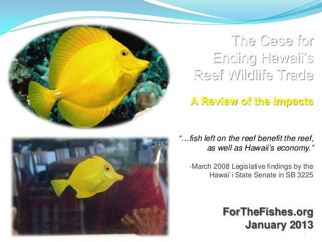 Oahu Aquarium Trade Impacts