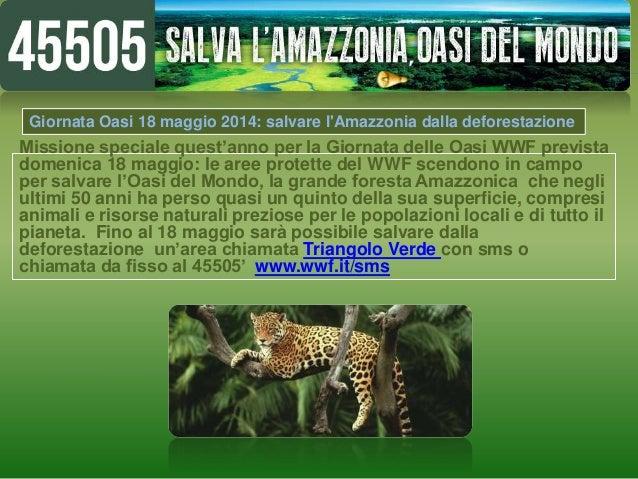 Missione speciale quest'anno per la Giornata delle Oasi WWF prevista domenica 18 maggio: le aree protette del WWF scendono...