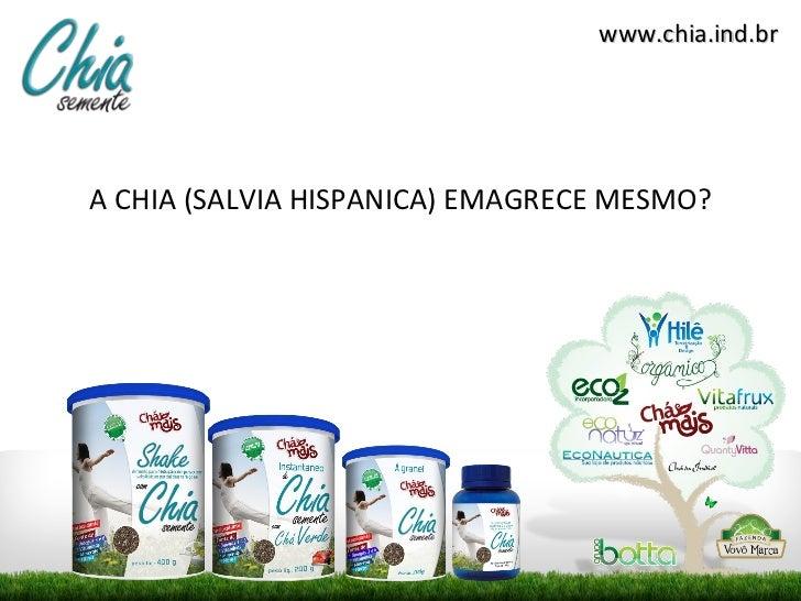 <ul><li>A CHIA (SALVIA HISPANICA) EMAGRECE MESMO? </li></ul>www.chia.ind.br