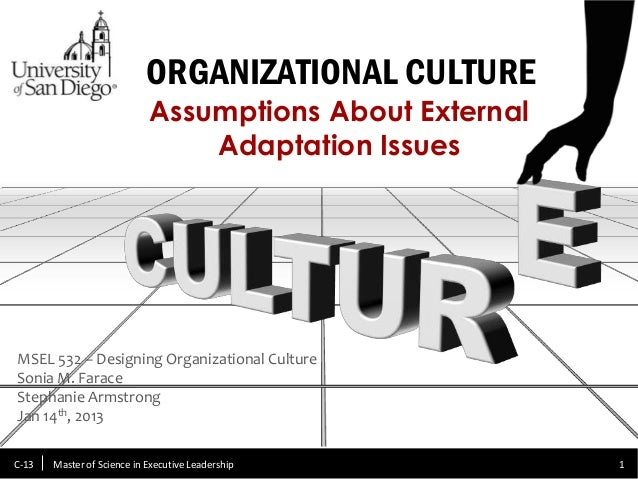 Organizational Culture & External Adaptation Issues
