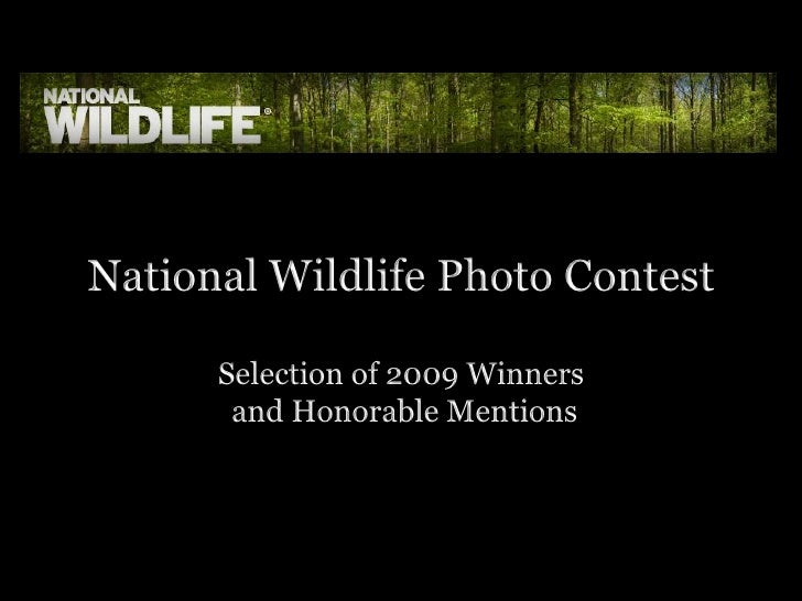 National Wildlife Photo Contest 2009 Winners