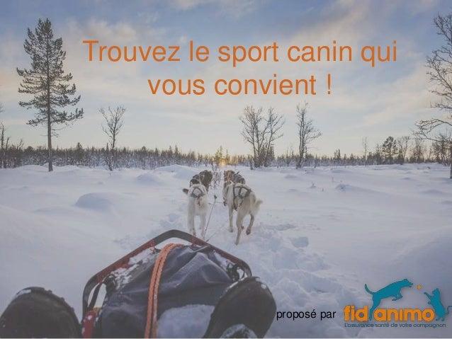 Trouvez le sport canin qui vous convient ! proposé par