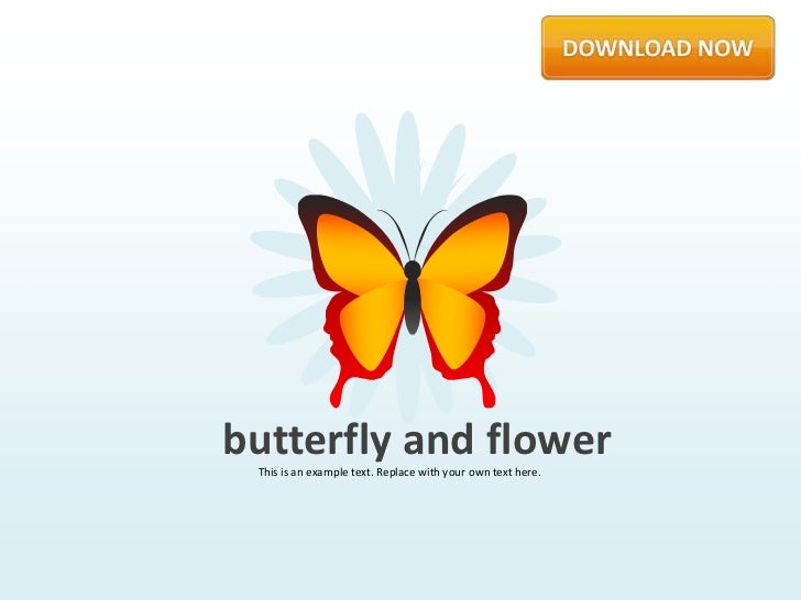 Butterfly and Flowers by Slideshop