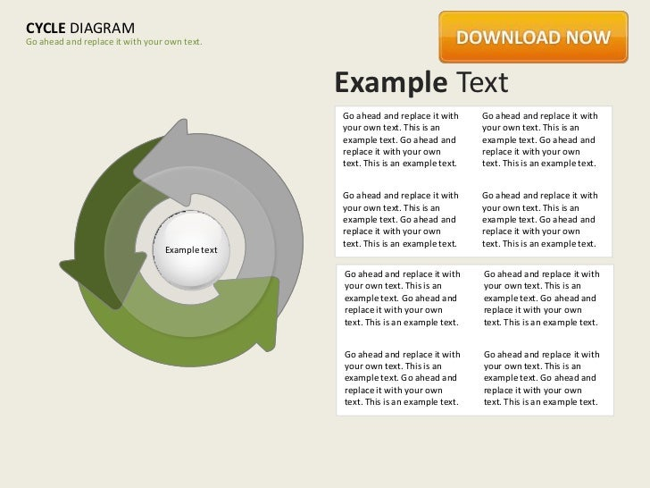 CYCLE DIAGRAMGo ahead and replace it with your own text.                                                Example Text      ...