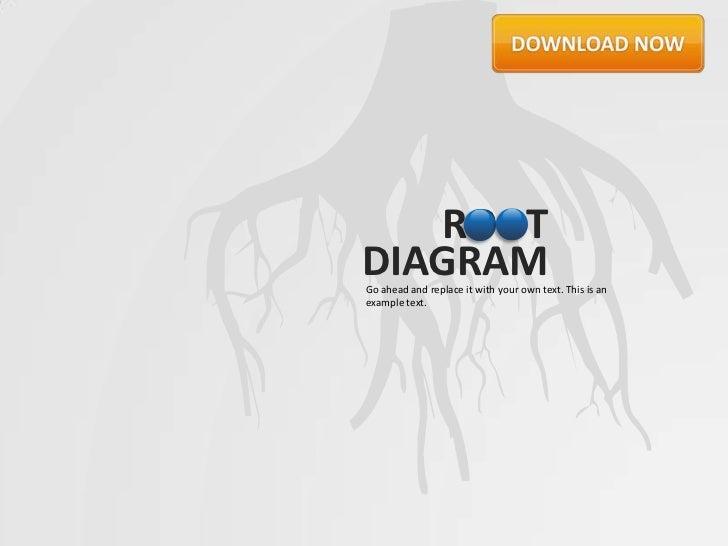 Root Diagram by Slideshop
