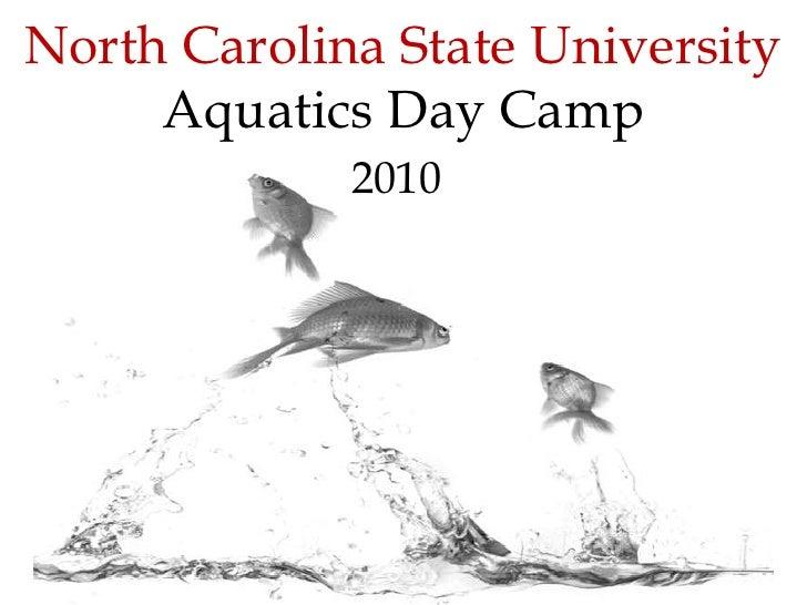North Carolina State UniversityAquaticsDay Camp<br />2010<br />