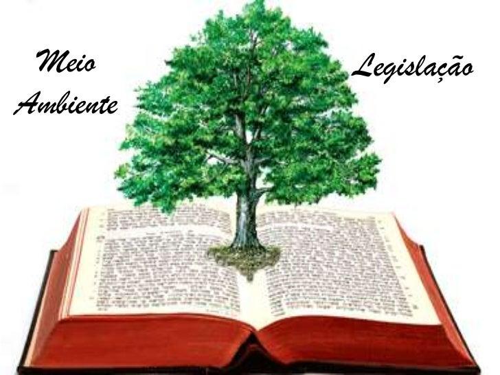 Meio Ambiente Meio Legalidade                 LegislaçãoAmbiente