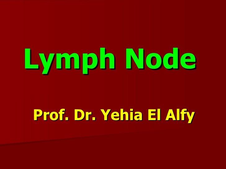 Slides of lymphoma and metastasis