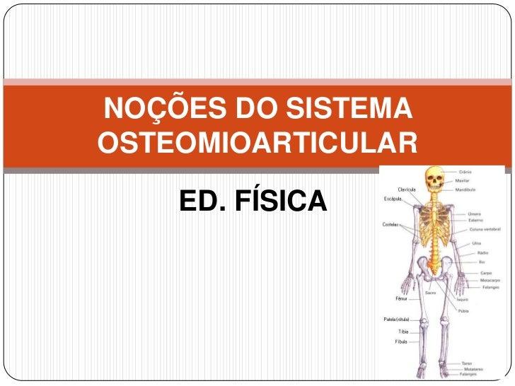 NOÇÕES DO SISTEMAOSTEOMIOARTICULAR    ED. FÍSICA