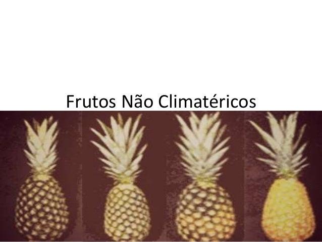 Frutos Não Climatéricos