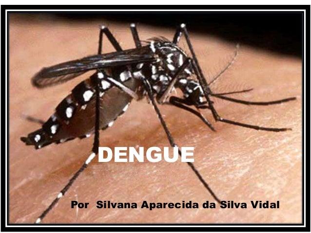 DENGUE  Por Silvana Aparecida da Silva Vidal