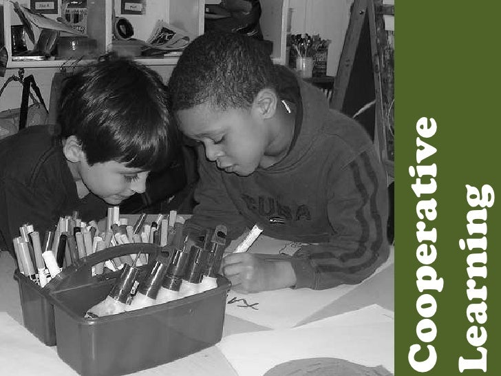 Cooperative Learning<br />