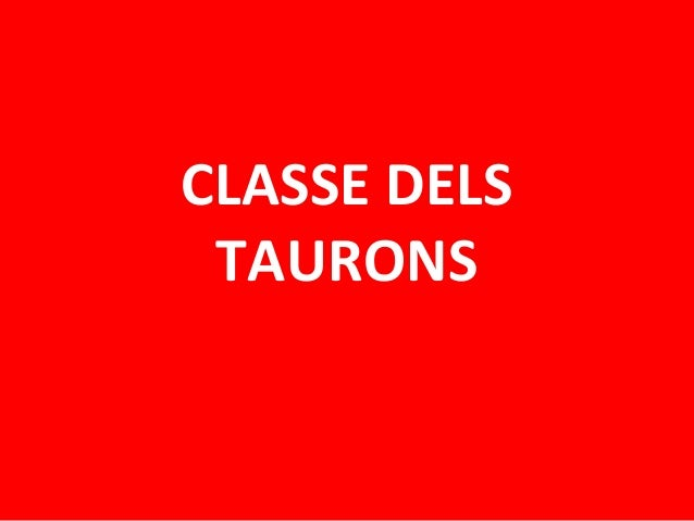 CLASSE DELS TAURONS